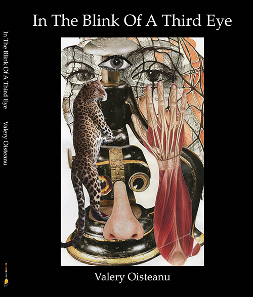 Front Cover: In the Blink of a Third Eye